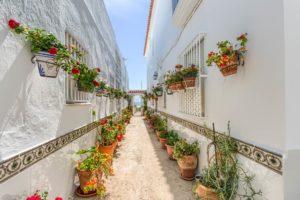 Patio y Cancela al fondo - Apartamentos Patio Andaluz - Playa de La Fontanilla (Conil)