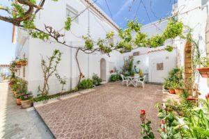 Patio Trasero - Apartamentos Patio Andaluz - Playa de La Fontanilla (Conil)