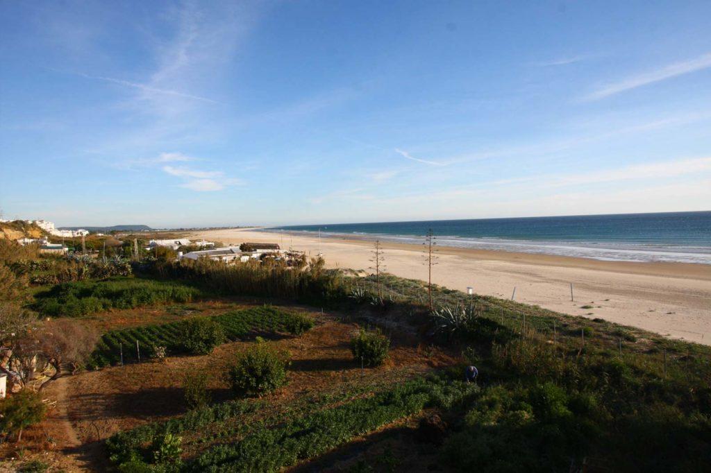 Playas del Chorrillo y Los Bateles - Apartamentos Patio Andaluz (Conil)