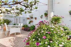 Slider Portada - Apartamentos Patio Andaluz - Playa de La Fontanilla (Conil)