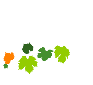 Logotipo Blanco Apartamentos Patio Andaluz - Playa de La Fontanilla (Conil)