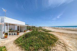 Vista de la Playa - Apartamentos Patio Andaluz - Playa de La Fontanilla (Conil)
